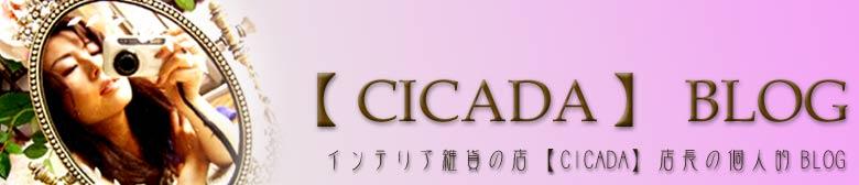 【CICADA】BLOG